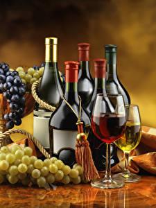 Обои Вино Виноград Бутылки Бокал Еда