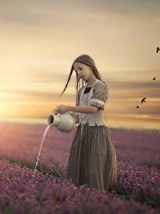 Картинки Поля Рассветы и закаты Девочки Кувшин Ребёнок