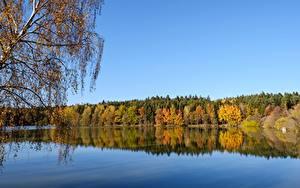 Фотографии Осень Леса Озеро Природа