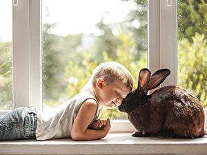 Фото Кролик Окна Мальчики Джинсов Милые ребёнок