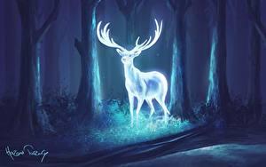 Фотографии Олени Волшебные животные Деревья Рога Ночные Фантастика