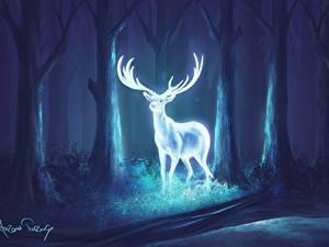Фотографии Олени Волшебные животные Деревья С рогами В ночи Фантастика