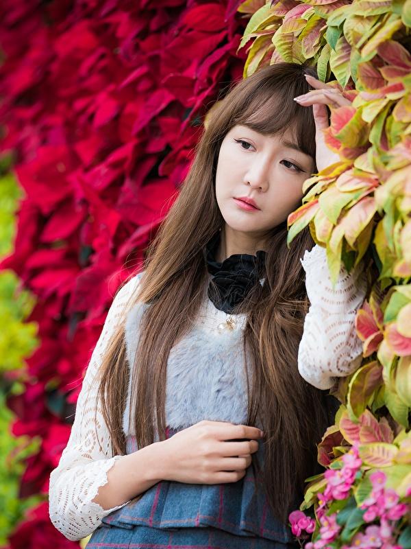 Фото Листья Шатенка боке Девушки Азиаты Руки 600x800 для мобильного телефона лист Листва шатенки Размытый фон девушка молодая женщина молодые женщины азиатки азиатка рука
