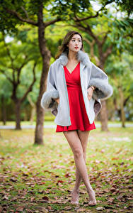 Обои Азиатка Размытый фон Ноги Платья Красная молодая женщина