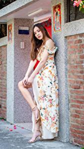 Фотография Азиатки Позирует Платья Взгляд девушка