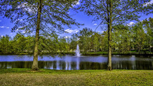 Фотографии США Парки Озеро Фонтаны Деревьев New Jersey Природа