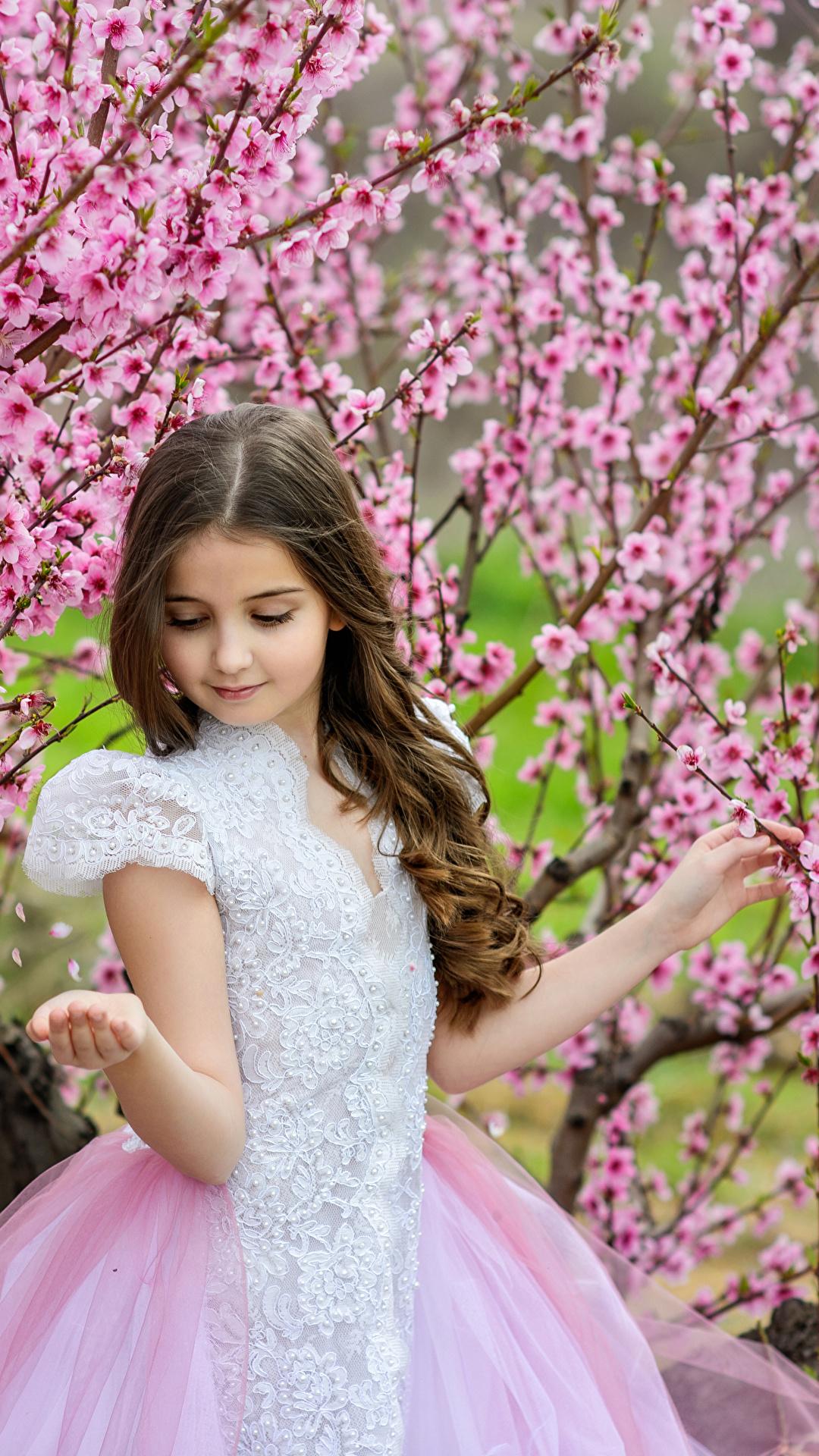 Фото Девочки ребёнок весенние Платье Цветущие деревья 1080x1920 для мобильного телефона девочка Дети Весна платья