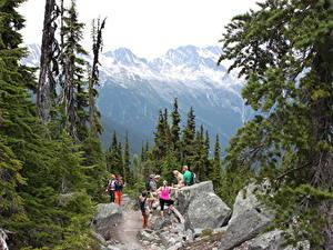 Картинки Канада Горы Камни Мужчины Банф Идет