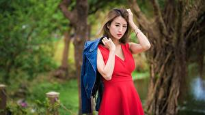 Фото Азиаты Размытый фон Позирует Платья Куртки Руки Шатенки Девушки