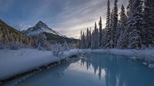 Фотографии Канада Парк Зимние Горы Река Пейзаж Банф Ель Снег Природа