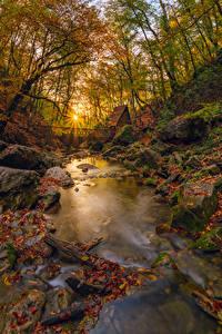 Обои Россия Крым Осенние Камень Деревья Листва Лучи света Ручей Природа