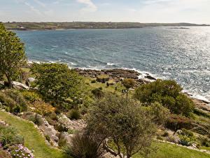 Картинка Великобритания Побережье Море Заливы Деревьев Кусты St Michael's Mount Природа
