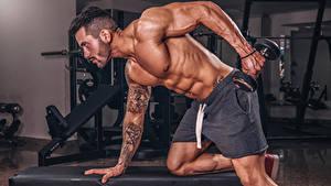 Фотографии Бодибилдинг Мужчины Физическое упражнение Гантеля Руки Татуировки Мускулы спортивная