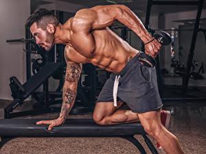 Фотографии Бодибилдинг Мужчины Физические упражнения Гантели Руки Татуировки Мускулы Спорт