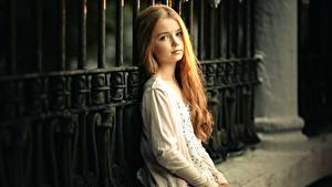 Картинка Девочка Милая Красивые Ограда Сидит Взгляд Sergey Piltnik Дети