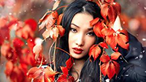 Фотография Азиаты Брюнетка Листья Взгляд Красивая Alessandro Di Cicco, Huan молодые женщины