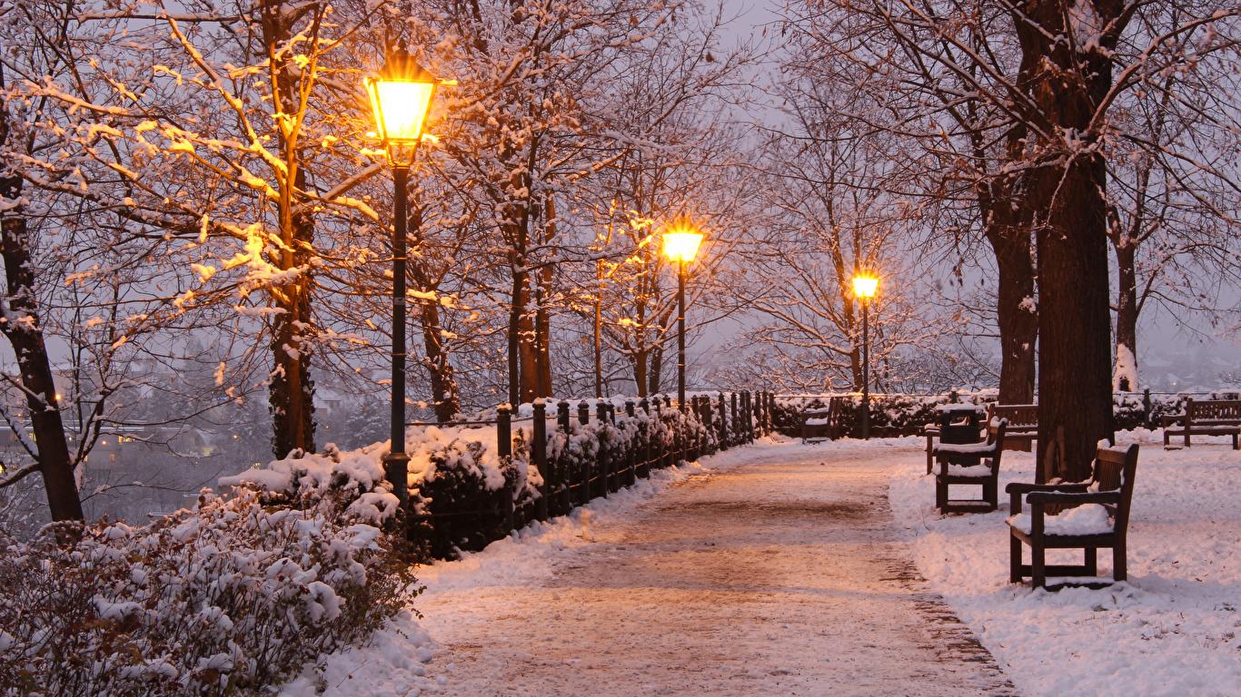 Фотография Чехия Brno зимние Природа парк снега Вечер Скамейка Уличные фонари деревьев 1366x768 Зима Снег снеге снегу Парки Скамья дерево дерева Деревья