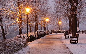 Фотография Чехия Парки Зимние Вечер Снегу Уличные фонари Скамейка Деревьев Brno Природа