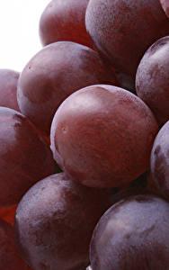 Фотографии Вблизи Виноград Ягоды Продукты питания