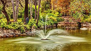 Картинка Испания Парк Фонтаны Пруд Мосты Деревья Seville Maria Luisa Park Природа