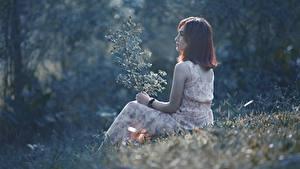 Картинки Азиаты Трава Шатенка Сидящие