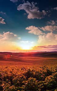 Картинки Пейзаж Рассветы и закаты Небо Поля Облака Природа