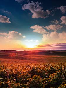 Картинки Пейзаж Рассветы и закаты Небо Поля Облака