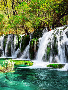 Фотография Цзючжайгоу парк Китай Парки Водопады Мха Природа