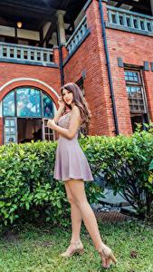 Фотографии Азиаты Позирует Платье Ноги Девушки