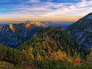 Картинка Австрия Гора Лес Пейзаж Альп Gmunden