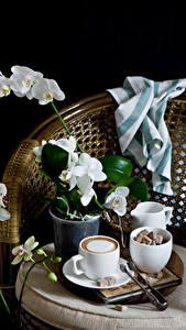 Картинка Натюрморт Орхидеи Кофе Капучино Черный фон Чашка Сахар Цветы