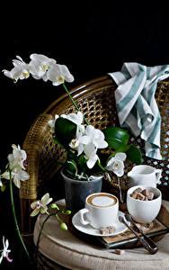 Картинка Натюрморт Орхидеи Кофе Капучино На черном фоне Чашке Сахар цветок Еда