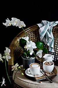 Картинка Натюрморт Орхидеи Кофе Капучино На черном фоне Чашке Сахар цветок