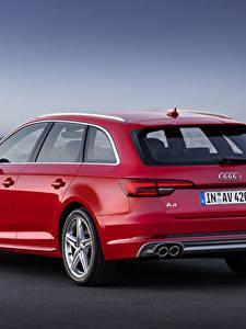 Фотография Audi Красный Сзади Универсал Металлик TDI quattro Avant, 2015 S line Авто