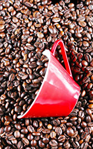 Обои Кофе Чашка Зерно Пища