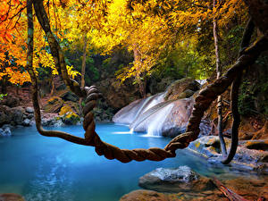 Фотографии Тропический Таиланд Водопады Осенние Ветка Природа