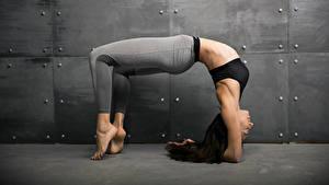 Фотография Фитнес Физические упражнения Ноги Шатенка Девушки Спорт