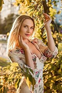 Картинки Georgiy Dyakov Блондинка Ветки Листва Платье Руки Взгляд