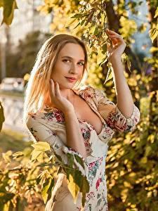 Картинки Georgiy Dyakov Блондинка Ветки Листва Платье Руки Взгляд молодая женщина