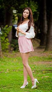 Фотографии Азиатки Шатенки Ног Юбки Блузка Смотрит девушка