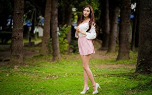 Фотографии Азиатки Шатенки Ног Юбки Блузка Смотрит