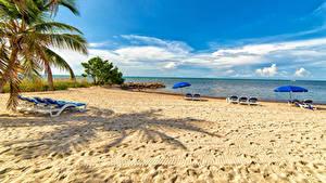 Обои для рабочего стола США Флорида Пляжа Шезлонг Пальма Зонт Smathers Beach Природа
