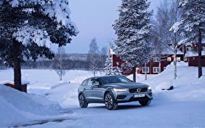 Фотография Volvo Зима Металлик 2018-19 V60 T5 Cross Country Машины