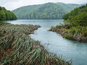 Фотография Хорватия Парки Озеро Горы Траве Plitvice Park Lake