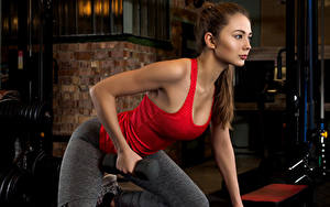 Фотография Фитнес Шатенка Физические упражнения Гантели Майка Красивые Девушки Спорт