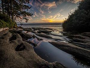 Фотографии Канада Парки Побережье Рассветы и закаты Vancouver Island National Parks