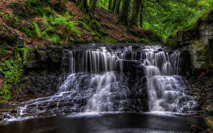 Фото Англия Водопады HDR Мох Ручей Roddlesworth woods waterfall Природа
