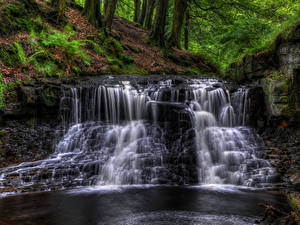 Фото Англия Водопады HDR Мох Ручей Roddlesworth woods waterfall Природа