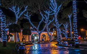 Обои Рождество Праздники Италия Здания Деревья Электрическая гирлянда Ночные Casamicciola Города