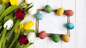 Фото Пасха Праздники Тюльпаны Доски Яйцами Шаблон поздравительной открытки Цветы